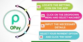 OPay partners with NaijaBet on easy online funding for users